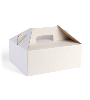 Carry Box - White Corrugated