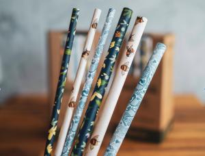 BioPak Paper Art Series BioStraws