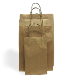 Kraft Paper Carry Bags - Twine Handle