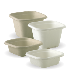 Sugarcane Square Containers and Lids