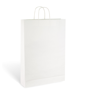 White Paper Carry Bag Twine Handle Large - W3