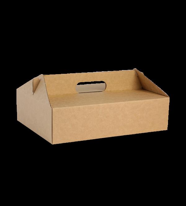 Broad Board Carry Box 3