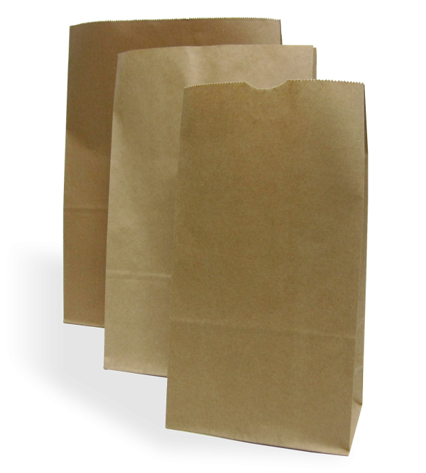 Kraft Paper Carry Bags - No Handle